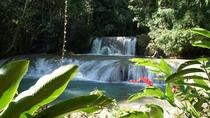 Private YS Falls Tour von Montego Bay, Negril, Private Sightseeing Tours