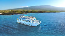 Snorkel Dolphin Adventure aan boord van Luxury Catamaran, Big Island of Hawaii, Snorkeling