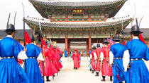 Seoul City Private Full-Day Tour Including Lunch, Seúl