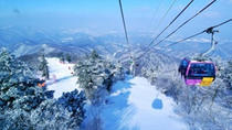 Yongpyong Gondola Day Trip from Seoul Including Outlet Shopping Option, Seoul, Private Day Trips