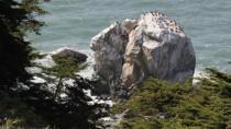 San Francisco's Spectacular Lands End, San Francisco, null