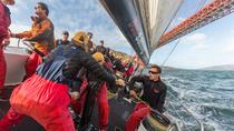 America's Cup Sailing Adventure on San Francisco Bay: Race Day, San Francisco, Sailing Trips