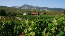 Day Tour Around Athens: Vineyards on the Trails of Classical Greece, Athens, Full-day Tours