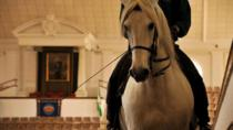 Jerez Day Trip from Gibraltar with Horse Show and Sherry Tasting, Gibraltar, Day Trips