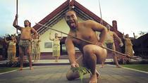Rotorua Discovery Te Puia Tour, Tauranga, Ports of Call Tours