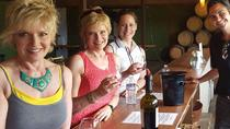 Guided Wine Tasting Tour of Temecula, Temecula, Wine Tasting & Winery Tours