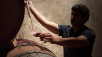 Boutique Winery Tours and Tastings from Mendoza, メンドーサ