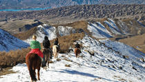 De Real Gaucho Dagtrip vanuit Mendoza: Don Daniel Ranch, Mendoza, Day Trips