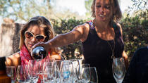 Full-Day Wine Tasting in Mendoza, メンドーサ
