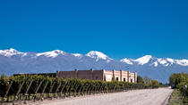 Hidden Wineries of the Uco Valley, Mendoza, Wine Tasting & Winery Tours
