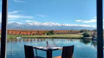 Private Escape in Uco's High End Wineries, Mendoza, Food Tours