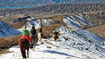 The Real Gaucho Day Trip from Mendoza: Don Daniel Ranch, Mendoza, Day Trips