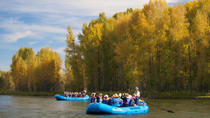 21-Mile Combo: Snake River-Scenic and Whitewater Trip, ジャクソンホール