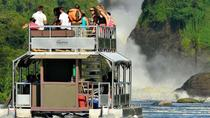 6 Days Bwindi Gorilla Kibale and Murchison falls Safari, Kampala, Multi-day Tours
