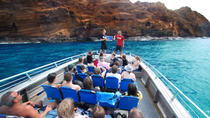 Molokini Wild Side: Snorkel And Cruise From Maui, Maui, Day Cruises