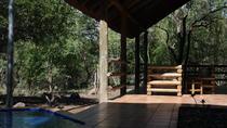 Kruger Park Lodge Safari, Kruger National Park, Multi-day Tours