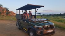 Private Tour: 5-Day Chalet Pilanesberg Safari from Johannesburg, Johannesburg, Private Sightseeing ...