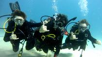 Discover Scuba Diving from Waikiki, Oahu, Scuba Diving