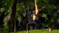 Yoga in the Park with Sunshine, Bangkok, Yoga Classes