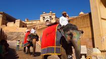08 DAYS CULTURAL INDIA TOUR, New Delhi, Multi-day Tours