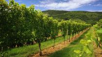 Weekday Virginia Private Custom Wine Tour from Charlottesville, シャーロッツビル
