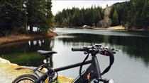 Guided Electric Bike Tour in Whistler, Whistler