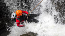 Full Day Tropical Rainforest Canyoning Adventure from Sydney, Sydney, Climbing