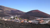 Etna Excursion and Lunch - Wine Tasting in Etna DOC Vinery, Catania, Wine Tasting & Winery Tours
