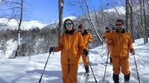 Shinhotaka Snowshoeing Experience, Takayama, City Tours