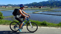 Short Afternoon Cycling Tour in Hida, Takayama, Bike & Mountain Bike Tours