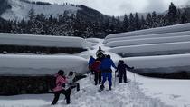 Winter Small Village Snowshoeing in Hida Takayama, Takayama, Ski & Snow
