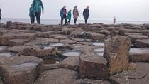 Small Group Giant's Causeway Day Tour from Belfast, Belfast, Day Trips