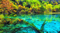 Excursão Privativa de 3 dias a Jiuzhaigou e Huanglong de Minivan, Chengdu, Multi-day Tours