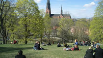 Swedish Lifestyle and Private Walking Tour of Uppsala, Uppsala