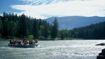 13 Mile Scenic Float Trip, Jackson Hole, Float Trips