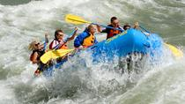 21-Mile Scenic and Whitewater Combination Trip with Lunch, Jackson Hole, White Water Rafting & ...