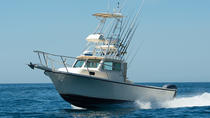 Three Quarter Day Private Fishing Charter from Dana Point, Dana Point, Fishing Charters & Tours