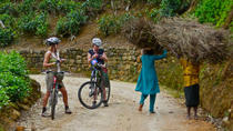 Nuwara Eliya Tea Trails Private Cycling Tour, Nuwara Eliya, Private Sightseeing Tours