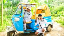 Private Day Tour: Colombo Tuk Tuk Safari, Colombo, Private Sightseeing Tours