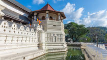 Private Day Tour: Kandy from Hikkaduwa, Galle, Day Trips