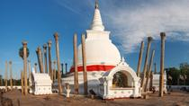 Private Day Tour: Sacred City of Anuradhapura from Negombo, Negombo, Day Trips