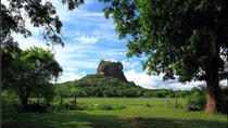 Private Day Tour: Sigiriya Rock and Dambulla Cave Temple Tour from Colombo, Colombo, Private Day ...