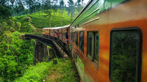 Private Day Trip: Nuwara Eliya from Kandy by Train, キャンディ