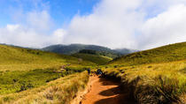 Private Guided Hike to Kirigalpoththa Mountain via Horton Plains, Sri Lanka central