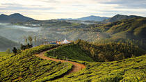 Private Guided Hike to Single Tree Hill in Nuwara Eliya, Nuwara Eliya, Hiking & Camping