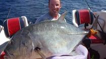 Private Tour: Deep Sea Fishing Tour in Mirissa, Galle, Fishing Charters & Tours