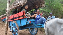 Private Village Tour Including Traditional Sri Lankan Lunch from Negombo, Negombo, Private Day Trips