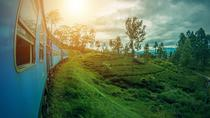 Scenic Train Tour to Ella from Kandy, Kandy, Day Trips