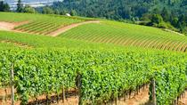 Luxury Group Wine Tour of Willamette Valley, Portland, Wine Tasting & Winery Tours