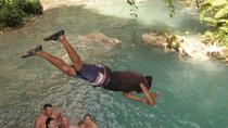 Bob Marley Nine Mile and Blue Hole Tour, Ocho Rios, Full-day Tours